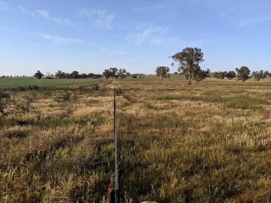 Landscape_Contrasting fields